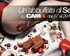 Weekend CAM4 con Show a tema: un'abbuffata di SESSO!