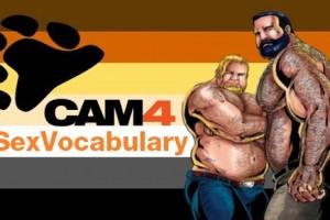 #SexVocabulary: MisterY e il LINGUAGGIO GAY, alla scoperta del termine